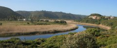 Garden Route - Wilderness